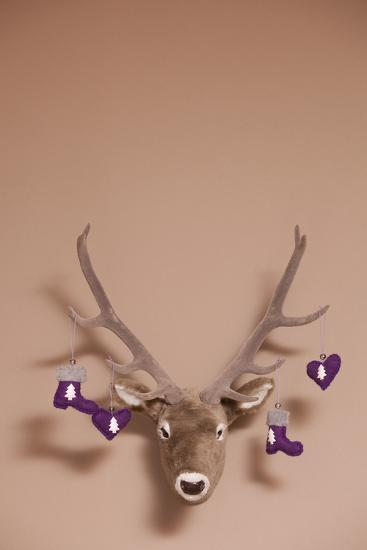 Artificial Deer Head, Tag, Christmas Tag-Nikky Maier-Photographic Print