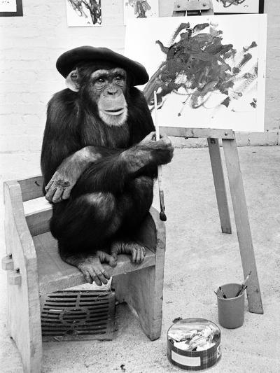 Artist Chimp 1955-Williams-Photographic Print