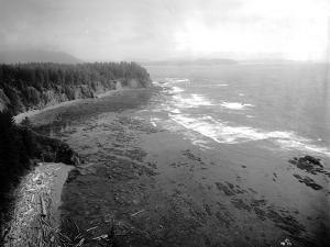 Coast South of Cape Flattery, 1910 by Asahel Curtis