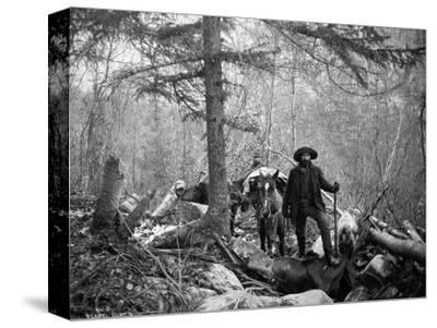 Gold Prospector Traveling For Supplies, Undated