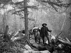 Gold Prospector Traveling For Supplies, Undated by Asahel Curtis