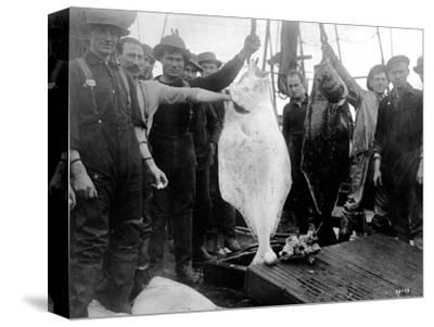 Halibut Fishermen on the Pacific-Alaska Coast, Undated