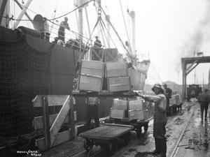 Loading Apple Cargo at Dock, Seattle, 1921 by Asahel Curtis