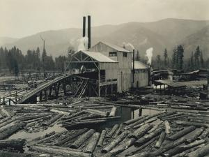 Logging Mill, Circa 1929 by Asahel Curtis