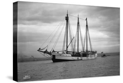 Schooner Great Bear, 1916