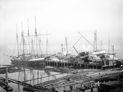 Ships Loading Timber at Docks, Seattle, 1916