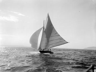 Spray, 1914