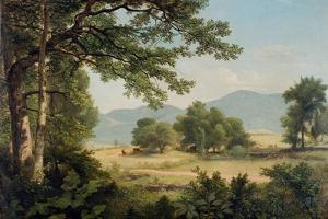 Catskill Meadows in Summer, 1861 by Asher Brown Durand