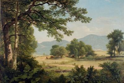 Catskill Meadows in Summer, 1861
