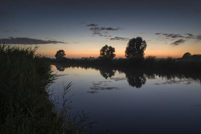 Ashes at the Ems Jade Channel, Evening Light, Gšdens, Sande, Frisia, Lower Saxony, Germany-Axel Ellerhorst-Photographic Print
