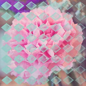Pink Flower Diamonds by Ashley Davis