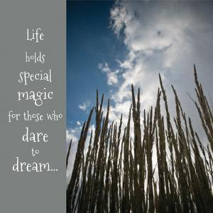 Dare to Dream by Ashley Hutchins