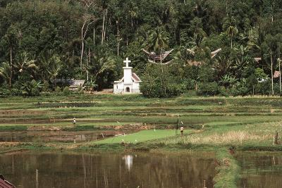 Asia, Indonesia, Sulawesi, View of Church and Field-Tony Berg-Photographic Print