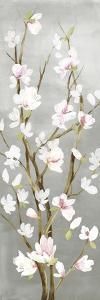 Budding Magnolia II by Asia Jensen