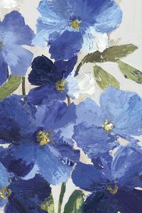 Cobalt Poppies III by Asia Jensen