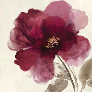 Crimson Peony II by Asia Jensen