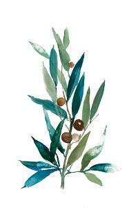 Olive Branch I by Asia Jensen