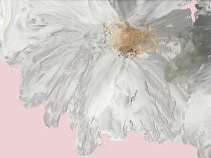 White Peony by Asia Jensen