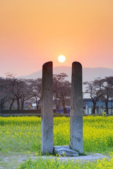 Asia, Republic of Korea, South Korea, Gyeongsangbuk-Do, Gyeongju-Christian Kober-Photographic Print