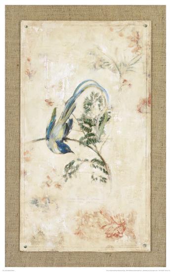 Asian Paradise Flycatcher-Jillian David-Art Print