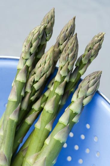Asparagus Spears-Jon Stokes-Photographic Print