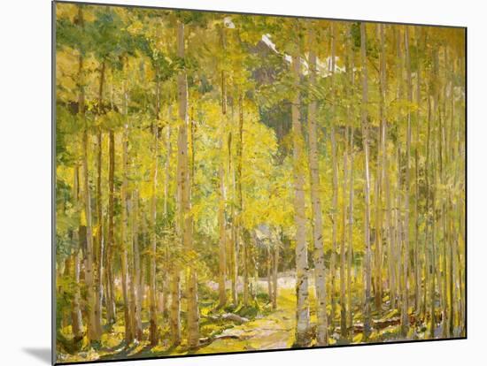 Aspen Forest-Oscar Berninghouse-Mounted Art Print