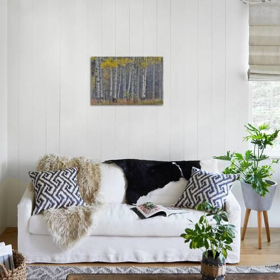 how to style your sofa using throw pillows simply grove.htm aspen grove in glowing golden colors of autumn  aspen township  aspen grove in glowing golden colors of