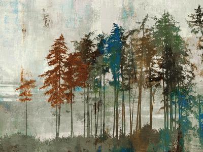 Aspen-Andrew Michaels-Art Print