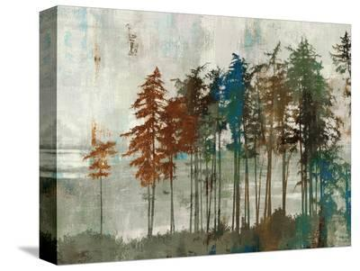 Aspen-Andrew Michaels-Stretched Canvas Print