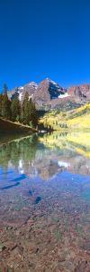 Aspens and Morning Light, Maroon Bells Near Aspen, Colorado