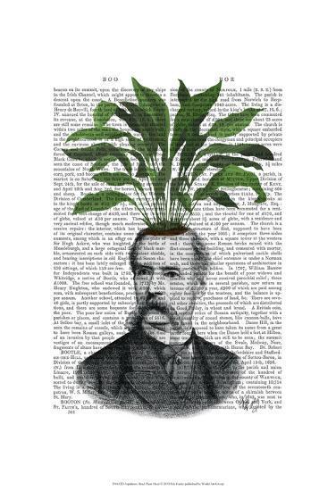 Aspidistra Head Plant Head-Fab Funky-Art Print