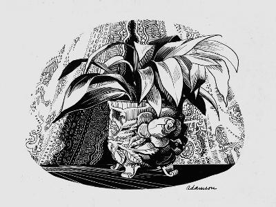 Aspidistra in a Bowl, 1950s-George Adamson-Giclee Print