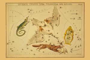 Lacerta, Cygnus, Lyra, Vulpecula and Anser by Aspin Jehosaphat