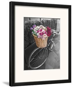 Basket of Flowers I by Assaf Frank