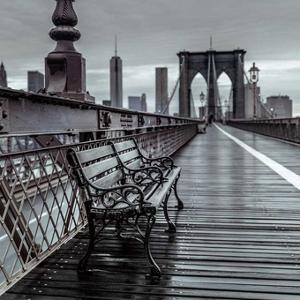 Bridge Beauty by Assaf Frank