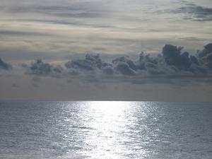 Shoreline Shimmer by Assaf Frank
