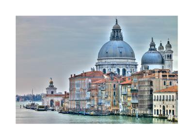 Venice Lately by Assaf Frank