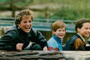 Princess Diana with Prince William and Prince Harry on Ride by Associated Newspapers