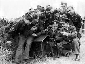 Raf Squadron with their Dog by Associated Newspapers