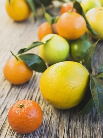 Assorted Citrus Fruit on Wooden Background
