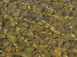 Assorted Rocks and Pebbles at Bottom of Shallow, Flowing Stream