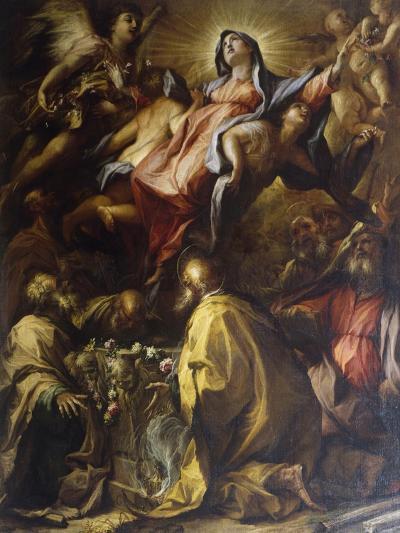 Assumption of the Virgin, 1697-Alessandro Gherardini-Giclee Print