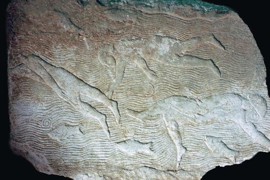 Assyrian relief of swimmers. Artist: Unknown-Unknown-Giclee Print