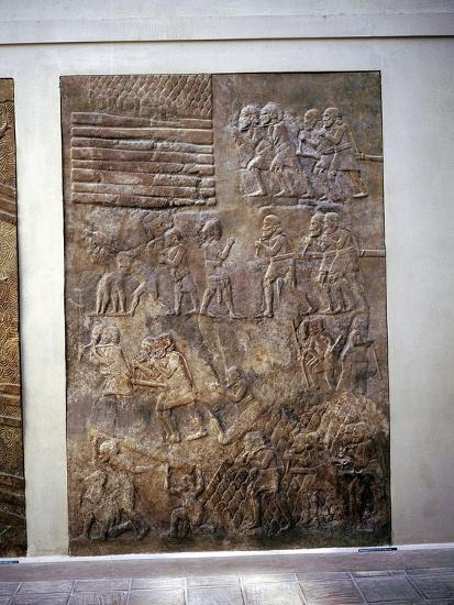 Assyrian relief showing transport of timber by land, Khorsabad, c8th century BC. Artist: Unknown-Unknown-Giclee Print