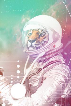 https://imgc.artprintimages.com/img/print/astronaut-tiger_u-l-q1db15k0.jpg?p=0