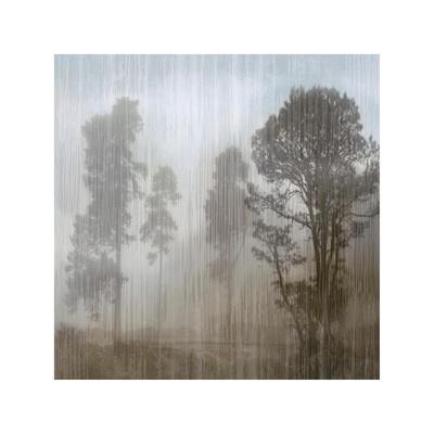 https://imgc.artprintimages.com/img/print/at-dawn-ii_u-l-f7m1qx0.jpg?p=0