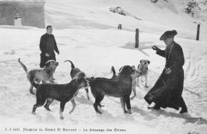At the Hospice du Grand Saint- Bernard Dogs are Trained to Rescue Unfortunate Travellers