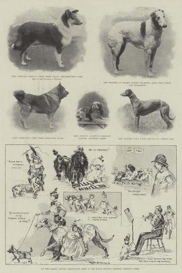 At the Ladies' Kennel Association Show in the Royal Botanic Gardens, Regent's Park-Ralph Cleaver-Giclee Print