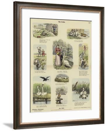 At the Pond--Framed Giclee Print