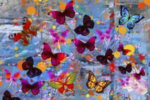 Butterflies Season by Ata Alishahi